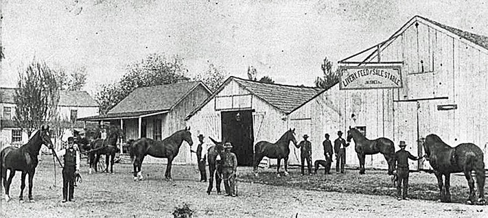 Stable & Horses